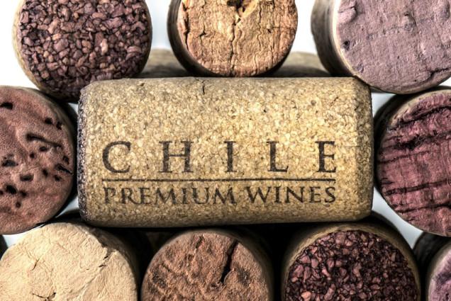 вино в Чили