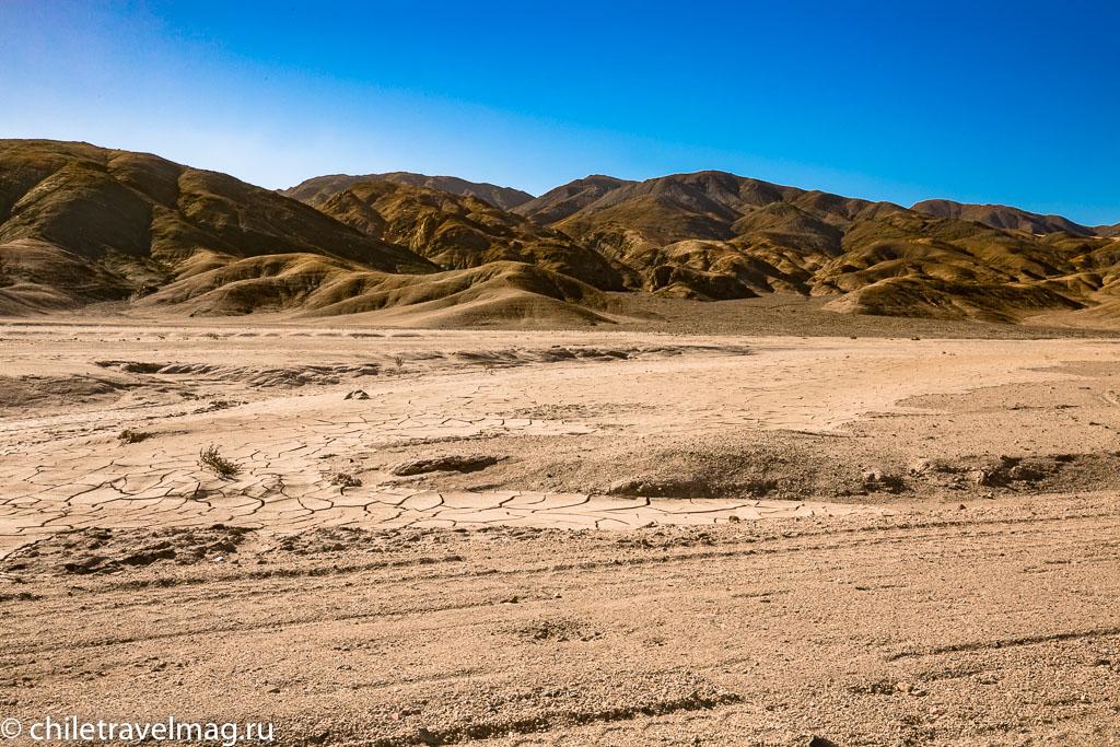 Парк Пан-де-Асукар, поездка в Чили1