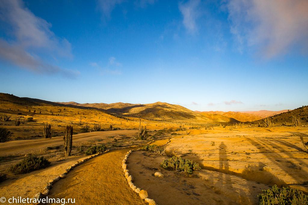Парк Пан-де-Асукар, поездка в Чили11