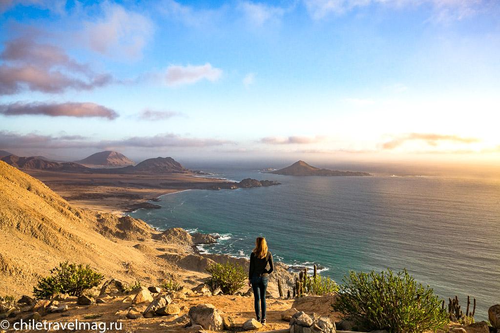 Парк Пан-де-Асукар, поездка в Чили14