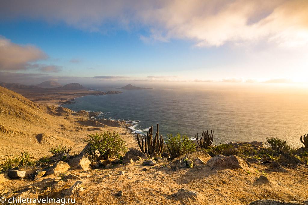 Парк Пан-де-Асукар, поездка в Чили18