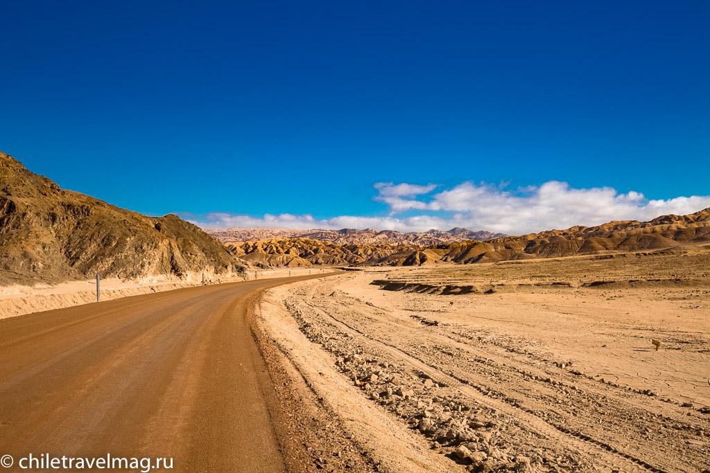 Парк Пан-де-Асукар, поездка в Чили2