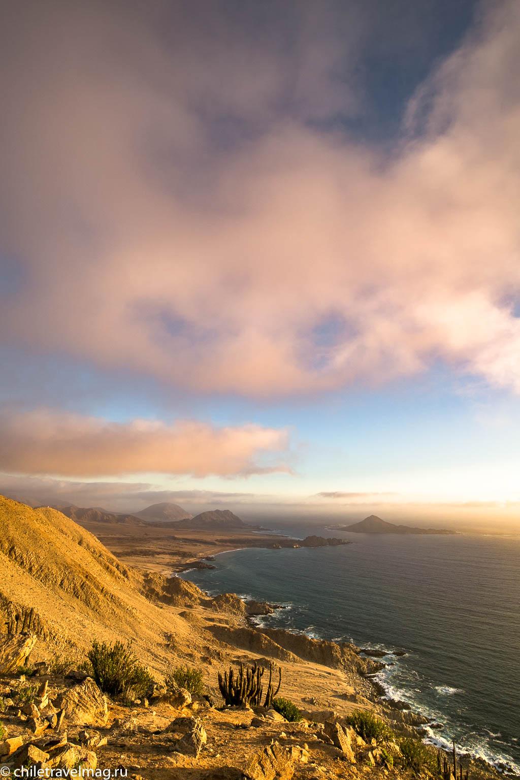 Парк Пан-де-Асукар, поездка в Чили22