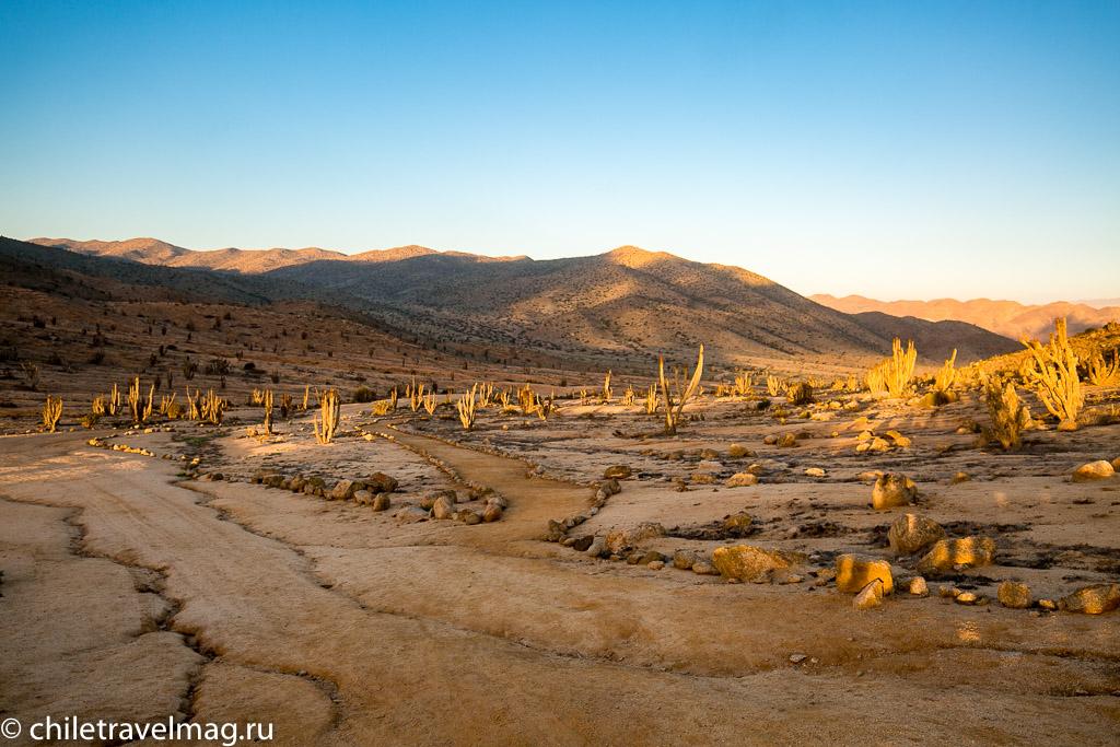 Парк Пан-де-Асукар, поездка в Чили25