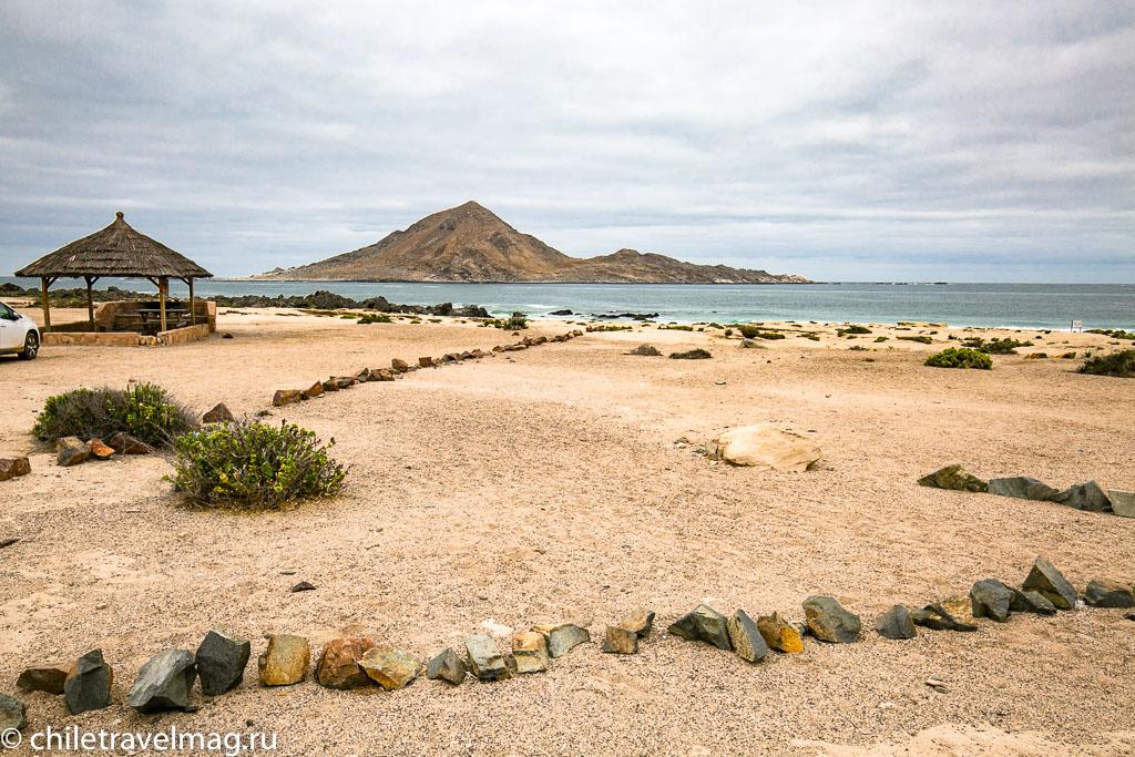 Парк Пан-де-Асукар, поездка в Чили26
