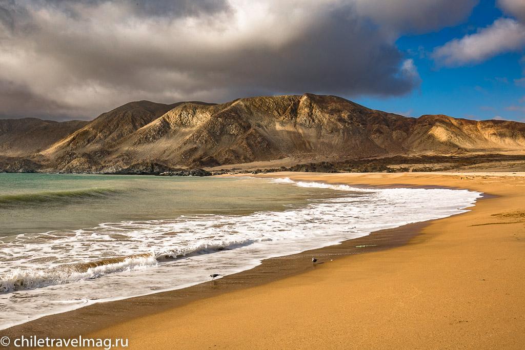 Парк Пан-де-Асукар, поездка в Чили3
