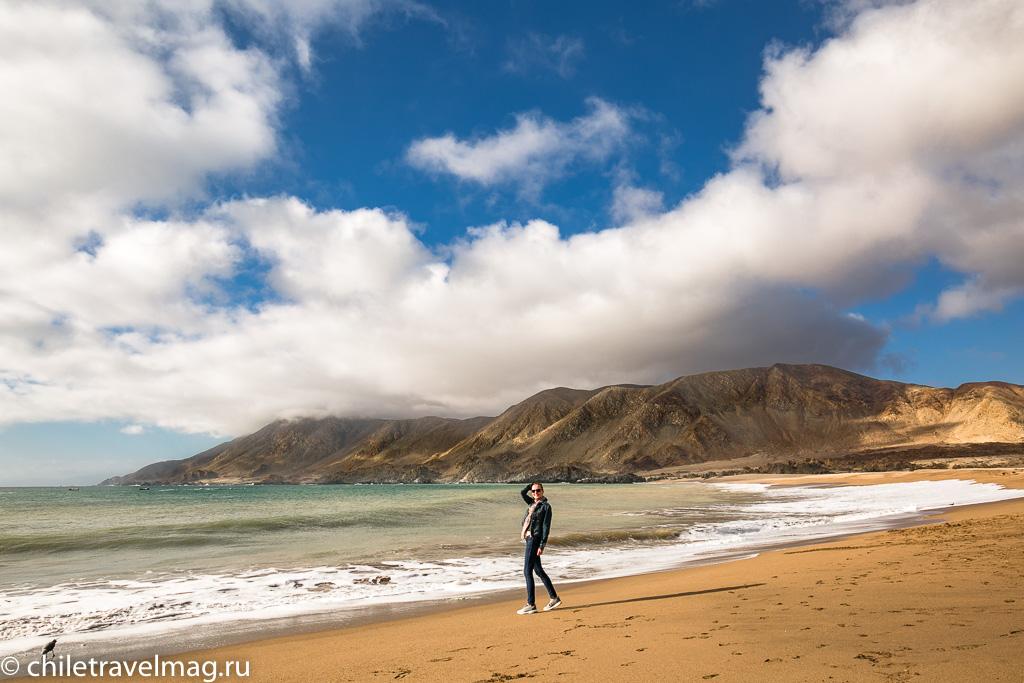 Парк Пан-де-Асукар, поездка в Чили4