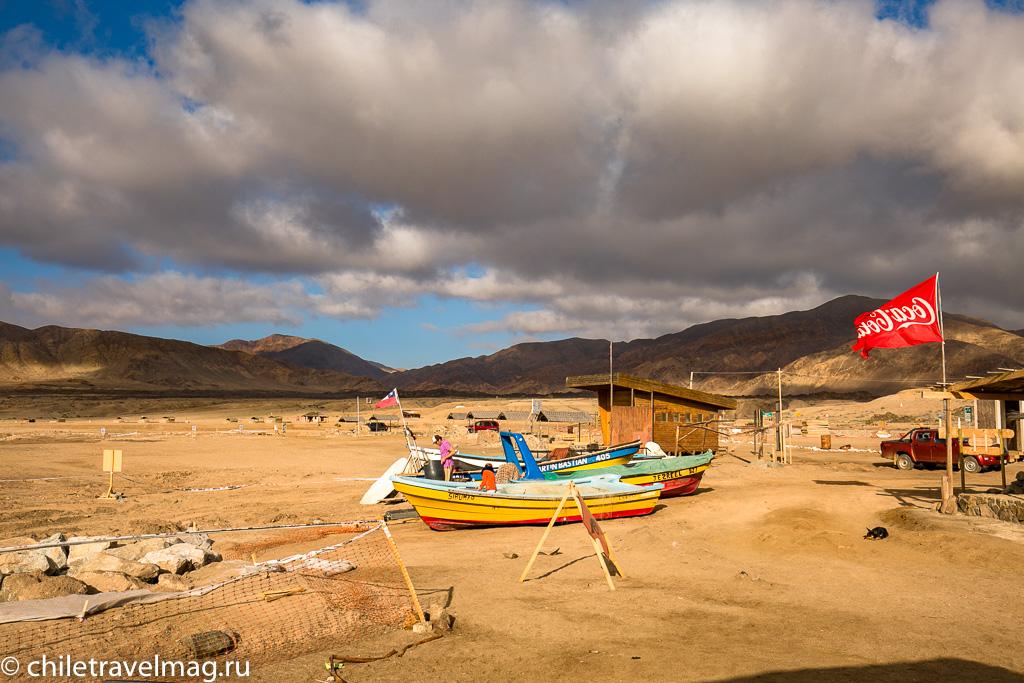 Парк Пан-де-Асукар, поездка в Чили6