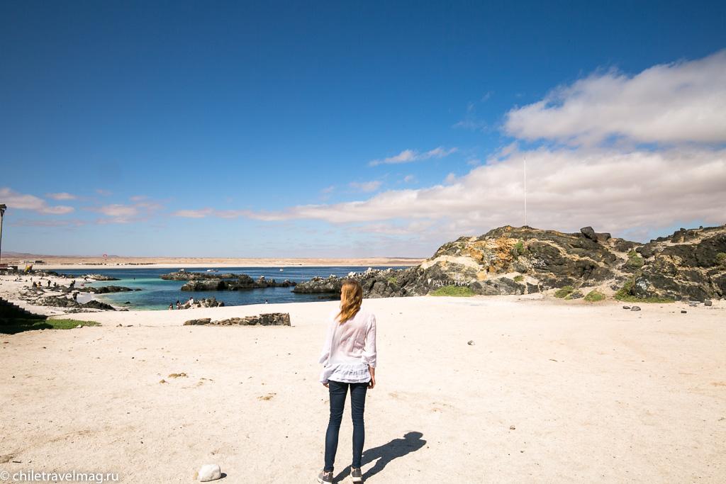 Баия Инглеса пляж в Чили1