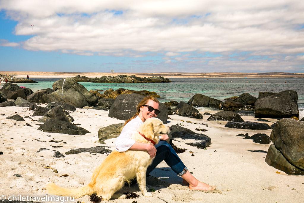 Баия Инглеса пляж в Чили10