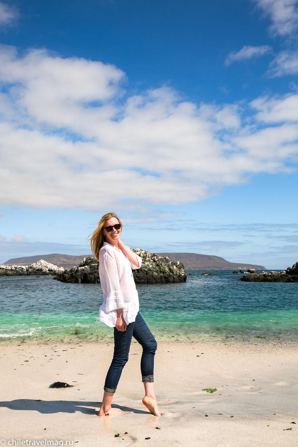 Баия Инглеса пляж в Чили12