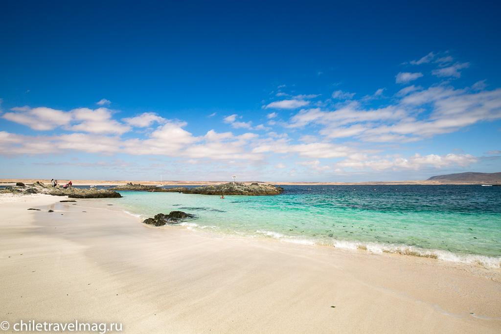 Баия Инглеса пляж в Чили15