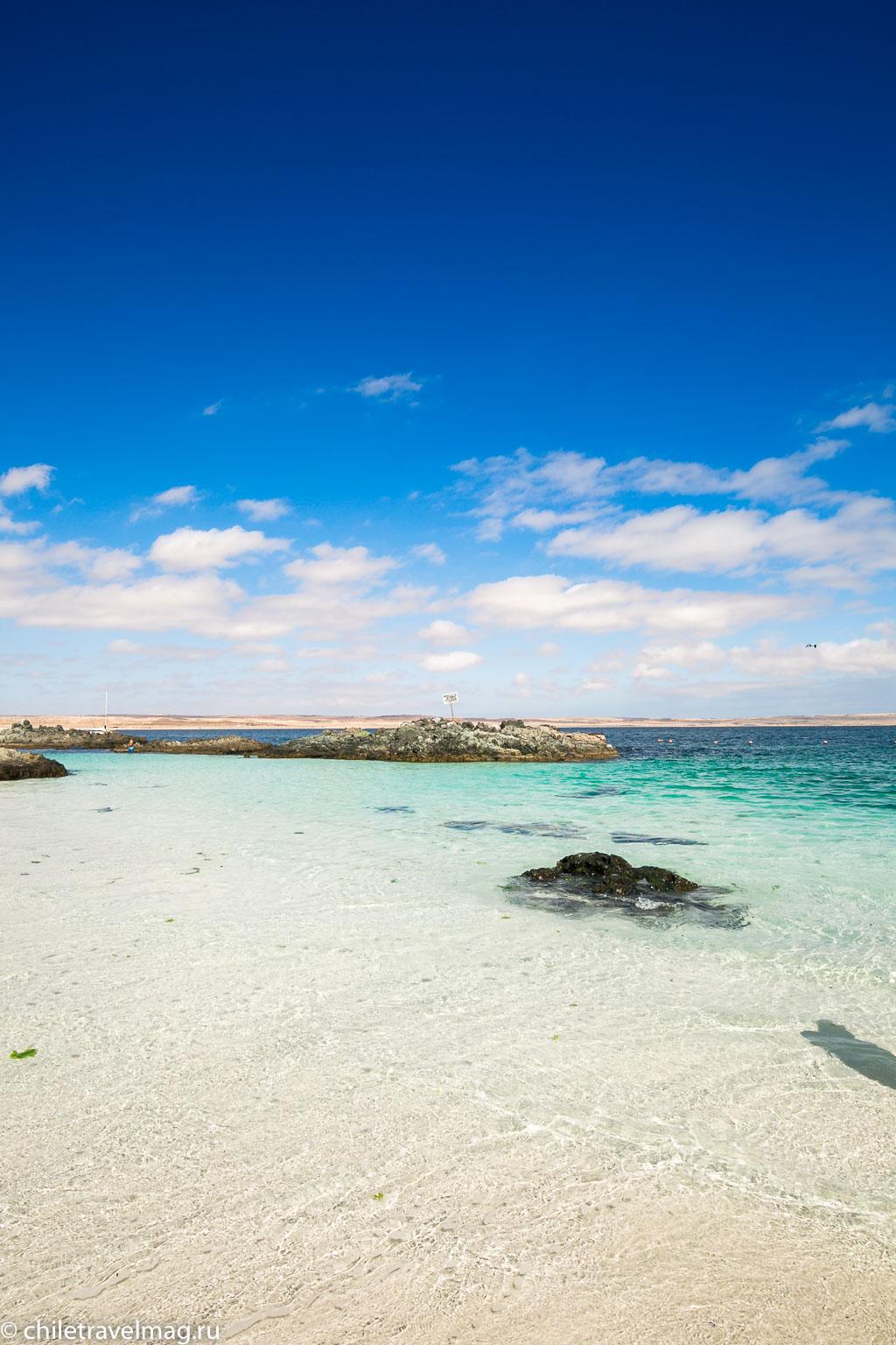 Баия Инглеса пляж в Чили16