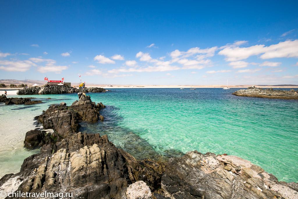 Баия Инглеса пляж в Чили18