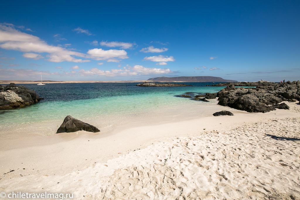 Баия Инглеса пляж в Чили19