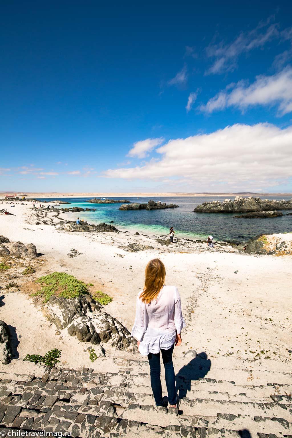 Баия Инглеса пляж в Чили4