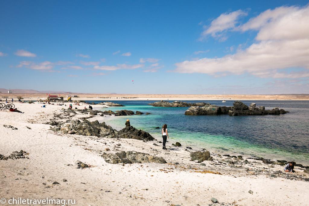 Баия Инглеса пляж в Чили5