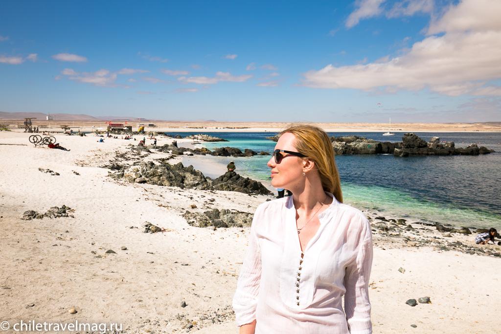 Баия Инглеса пляж в Чили6