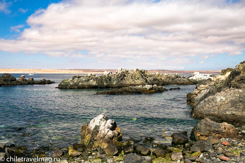 Баия Инглеса пляж в Чили7