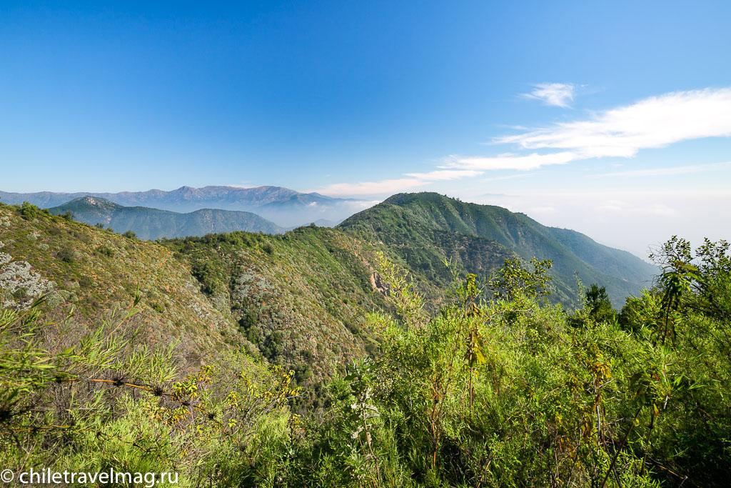 Парк Ла Кампана треккинг горы Чили1