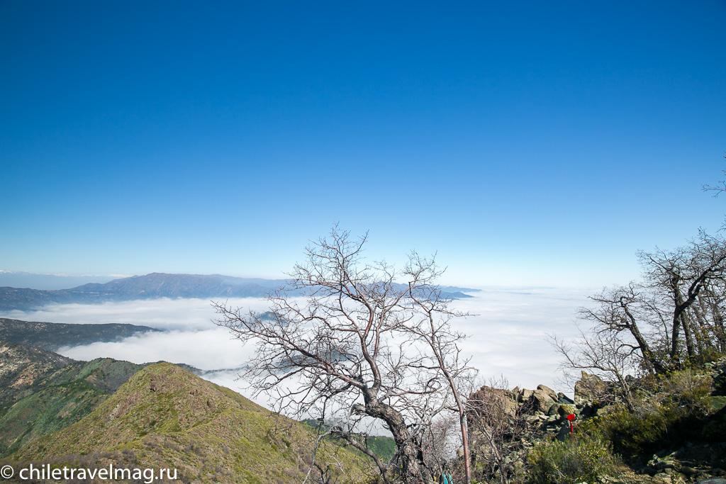 Парк Ла Кампана треккинг горы Чили10