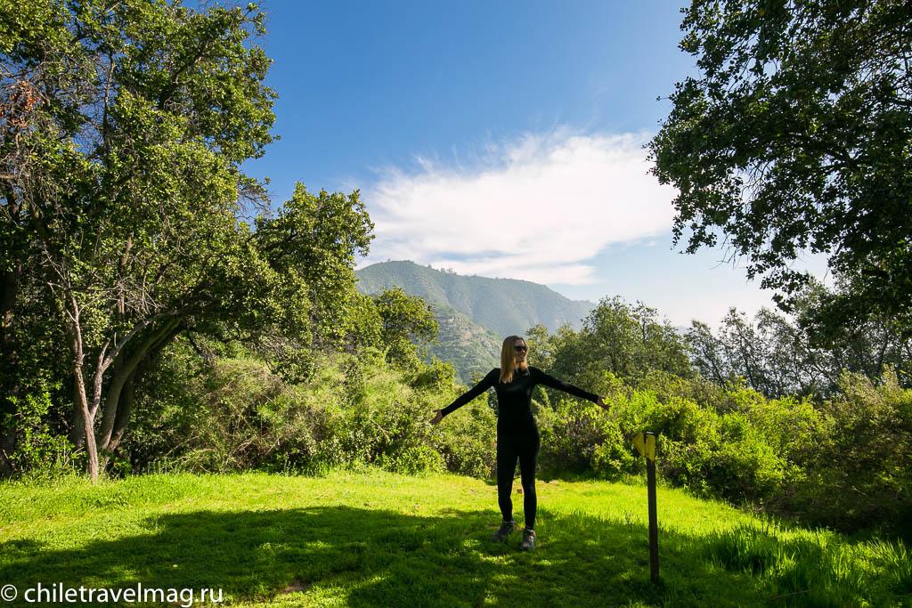 Парк Ла Кампана треккинг горы Чили5