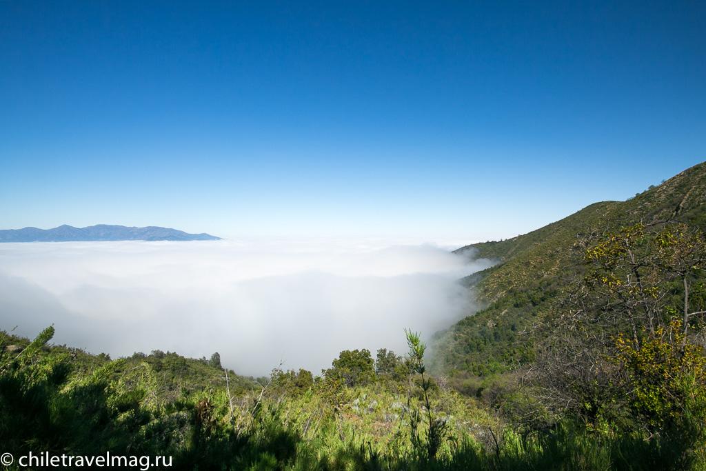 Парк Ла Кампана треккинг горы Чили7