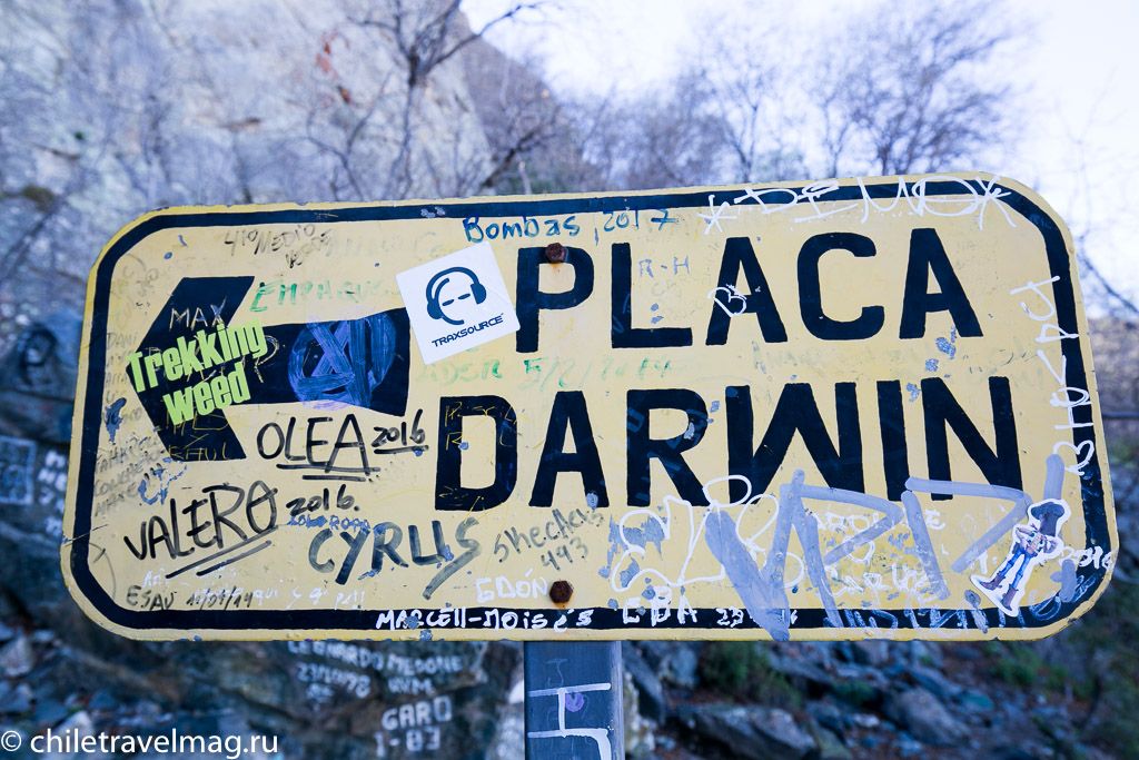 Парк Ла Кампана треккинг горы Чили9