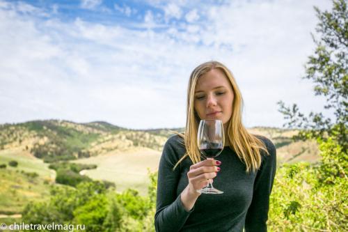 винодельня Маtetic Чили20