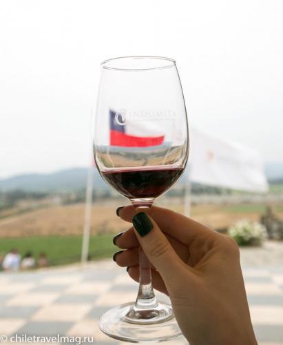 винодельня Inomita долина Касабланка Чили9