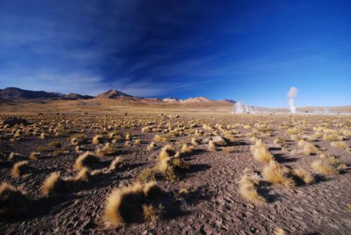 Гейзеры Эль-Татио, Атакама, Чили-15