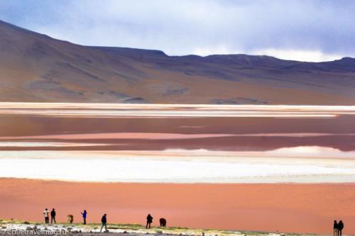 Лагуна Колорада в Боливии Laguna Colorada in Bolivia